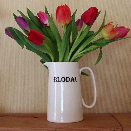 Flower Jug Jwg Blodau Bodlon