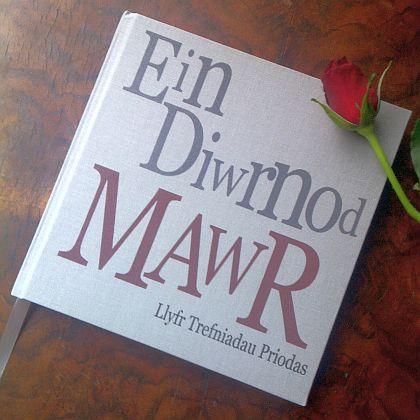 Our big day wedding planner bookllyfr trefniadau priodas ein ein diwrnod mawr wedding planner book junglespirit Images