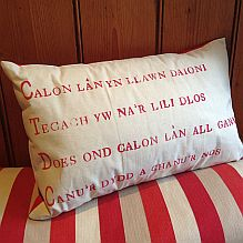 Hand printed Calon Lân Cushion
