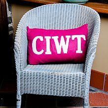 Ciwt Cushion